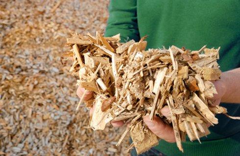 Biomasse Bastogne